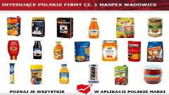 Interesujące polskie firmy